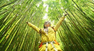5 bærekraftige reisetips