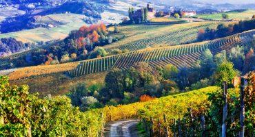 Høst det beste fra Italia i år