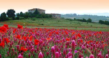 6 av de vakreste hagene i Europa ønsker våren velkommen!